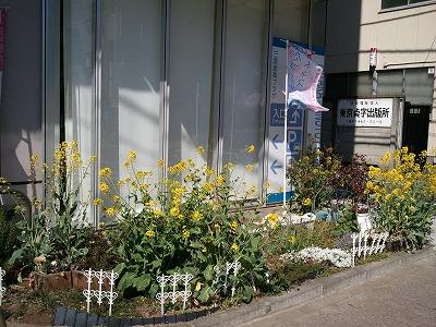 2011-04-01 14.08.09.jpg